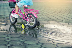 Child little girl riding bike in park Royalty Free Stock Photos