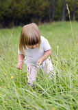 Child in long grass Royalty Free Stock Photo