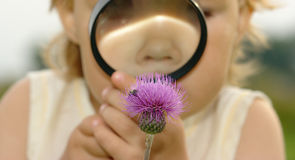 Free Child Looking At Flower Through Magnifying Glass Royalty Free Stock Image - 12553846