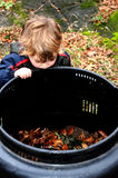 Child looking in compost bin. Young child investigates backyard compost bin in autumn stock photo