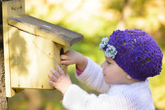 Child Looking Curious at one Birds House Stock Photos