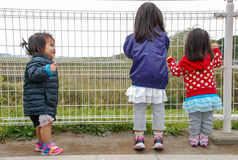 Child looking through fence. Narita AirPort Japan stock images
