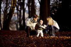 A child looking at a leaf with his parents in the park Stock Images