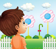 A child looking at the lollipop Stock Image