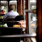 Child Looking out of Tram Window Royalty Free Stock Image