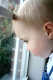Child Looking Out Window Royalty Free Stock Image
