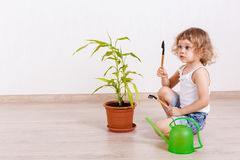 Child looking after the plant. Royalty Free Stock Images