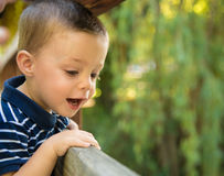 Child looking through a railing Royalty Free Stock Image