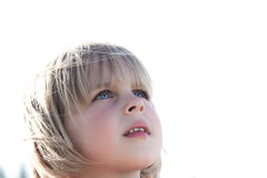 Child looking up in awe. Young girl looking up in awe on white background Royalty Free Stock Photo