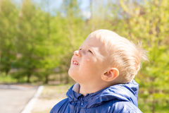 Child looking up Stock Images