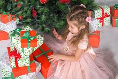 Child  looks gifts under a Christmas tree. Child  girl looks box of gifts under a Christmas tree Stock Photo