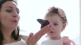 Child looks at insect with surprise, young mom with large butterfly in hand close-up. Child looks at the insect with surprise, young mom with large butterfly in stock footage
