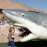 Child looks into the jaws of shark Royalty Free Stock Photography