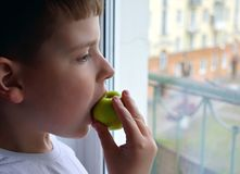 The child looks out the window and bites the green apple. A boy holds an apple in his hand royalty free stock photo