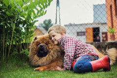 Child lovingly embraces his pet dog. Chow Chow. Outdoor portrait Stock Photography
