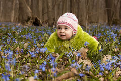 A child  lying in the flowers. A girl / child  lying in the flowers in spring forest Royalty Free Stock Photos