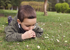 Child lying on grass in spring Stock Images