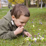 Child lying on grass in spring Stock Image