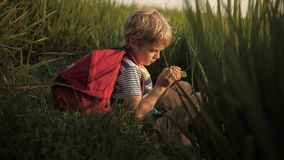 Child makes sketches of dreams in notebook in green grass