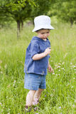 Child on meadow Stock Image