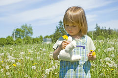 Child in the meadow royalty free stock image