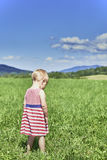 Child in the meadow Stock Images