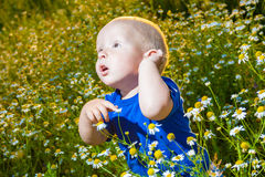 Child in a meadow Royalty Free Stock Photos