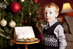 Child, Milk and Santa Cookies Stock Photos