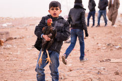 A Child From Mosul Fleeing The Fight With His Animal Royalty Free Stock Photography