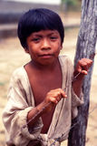 Child native indian of Brazil stock image