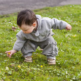 Child and nature Royalty Free Stock Images