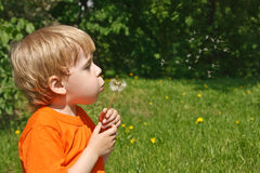 Child on the nature Stock Image