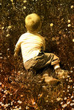 Child in nature Stock Photography