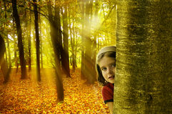 Child in nature stock images