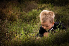 Child in nature Stock Image