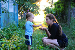 Child Nature discovery. The child throws grains of mother in hand. Photos of the child and mother, backlit Royalty Free Stock Images