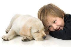 Child next to puppy. Child lying with Labrador retriever puppy on white background Royalty Free Stock Photos
