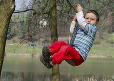 Free Child On Swing Stock Image - 39321901
