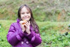 Child on Orange Farm Peeling the Fruit Stock Images