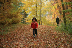 Child outdoor in forest Royalty Free Stock Image