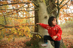 Child outdoor in forest Royalty Free Stock Images