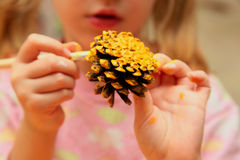The child painting pinecone Royalty Free Stock Image