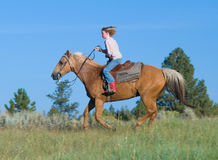 Child on palomino with sky Stock Image