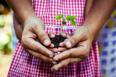 Child with parents hand holding young tree in egg shell together. For prepare plant on ground,save world concept Stock Image