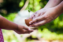 Child with parents hand holding young tree in egg shell together. For prepare plant on ground,save world concept Stock Images