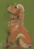 Child& x27; perro del organismo del dibujo de s Fotografía de archivo libre de regalías