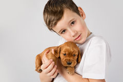 Child pet friendship concept - Portret of little boy with red puppy on white background Royalty Free Stock Images