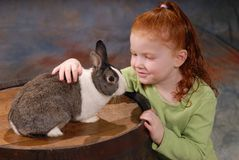 Child with Pet Rabbit. Cute red-haired girl (five years old) stroking a pet rabbit (breed is a Dutch rabbit Stock Photo