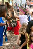 Child Pets Horse At Wildlife Festival Royalty Free Stock Photography