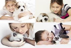 Child and pets Royalty Free Stock Images